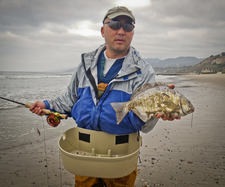 Barred surf perch flies sand surf for Surf fishing southern california