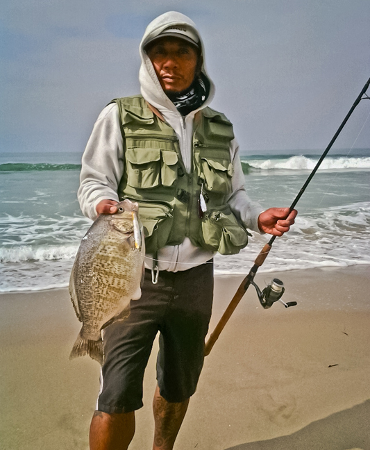 a 17.75 inch,barred surf perch landed by Mitch Orquiola! sweet! photo by Mitch Orquiola