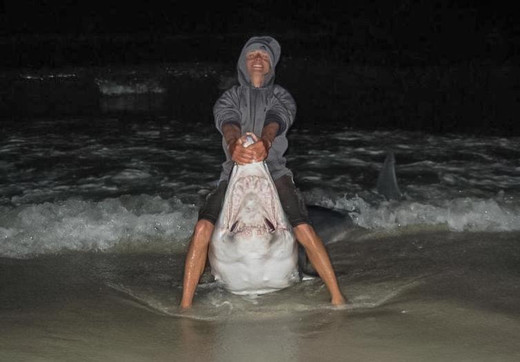 Mako sharks flies sand surf for Surf fishing for sharks
