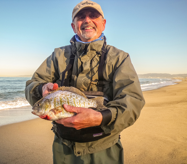 pop fly with a fat barred surf perch that was released. photo by Al Q