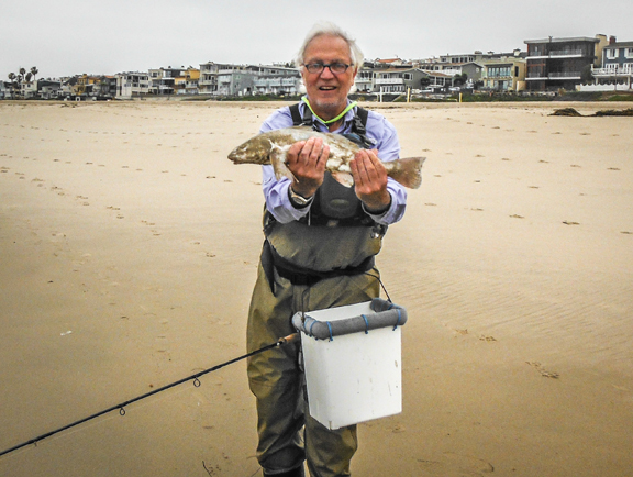 a nice fly caught corbina caught in the Manhattan Beach surf by Michael Grovenor.