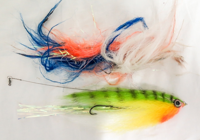 It's usually one fly per wahoo! Photo by Al Q