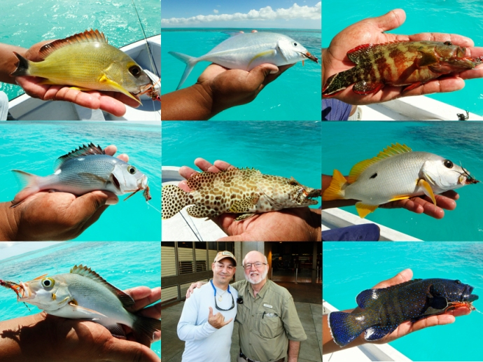 Some of the many multi-species landed by Steve Horgan on Christmas Island using Al Q's beach bug! Photos by Steve Horgan