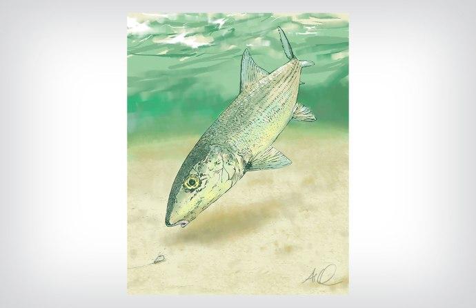 Bonefish painting ©2015 Art by Al Quattrocchi