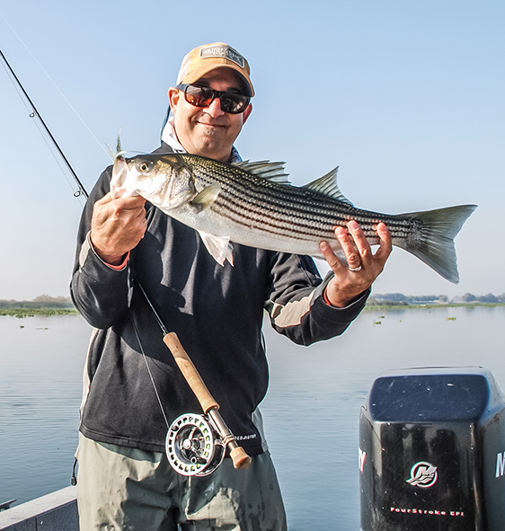 A little desert striper. Photo by Ben Byng
